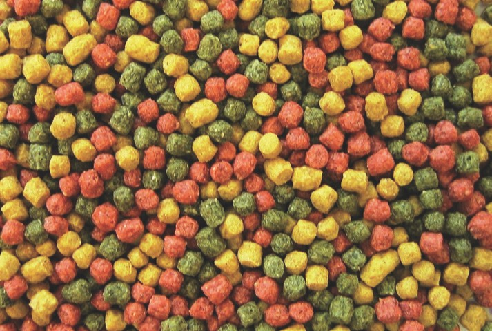 Profi Futter Mix rot/grün/gelb Ø 3 mm